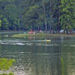 allatoona lake Payne around canton